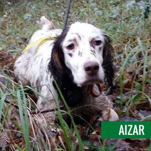 aizar-1-camada2015